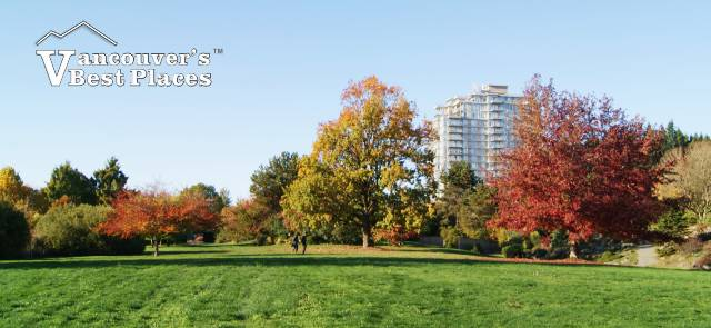 Botanical Garden at UBC in Fall