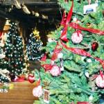 Christmas at the Cannery Trees