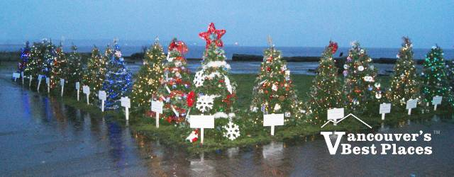 Dundarave Christmas Forest of Miracles