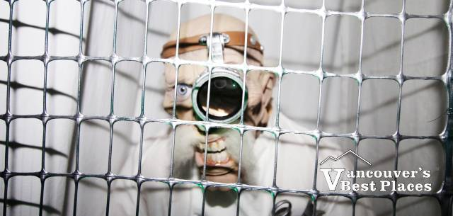 Caged Halloween Monster Doctor