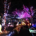 Holiday Hi-Light Festival Christmas Lights