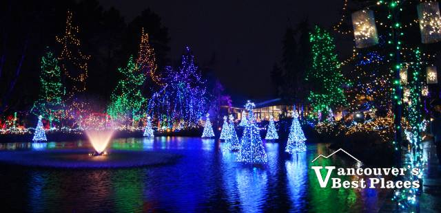 Lagoon at VanDusen Festival of Lights