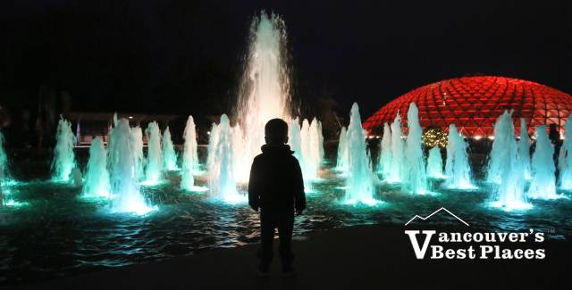 Boy's Christmas Silhouette at Bloedel