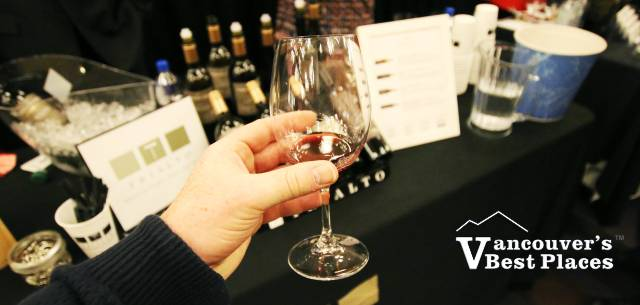 Wine Sampling at the Festival