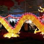 Glow Gardens Chinese Dragon