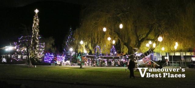 Harrison Park Christmas Lights