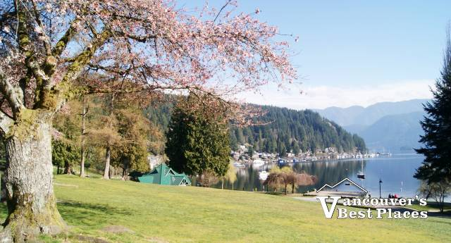 Deep Cove in Spring