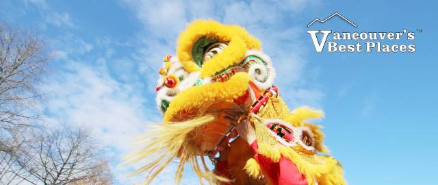 Lion Dance Lion in Chinatown