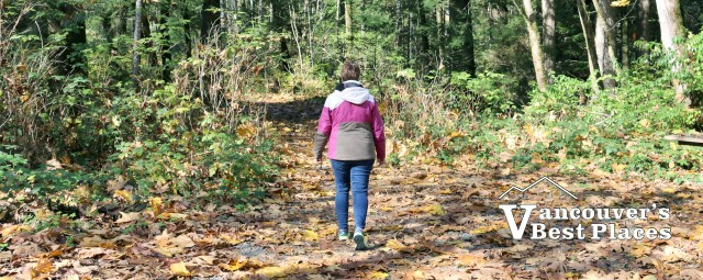 Harrison Spirit Trail in Autumn