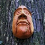 Tree Mask on the Spirit Trail