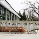 UBC Beaty Biodiveristy Museum