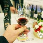 Wine Festival Wine Sample