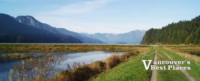 Trails Along the Dyke at Pitt Lake