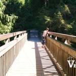 Bridge to Lower Seymour