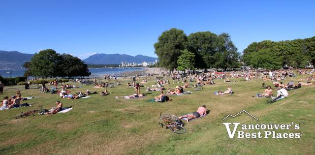 Suntanning on Kits Beach Lawns