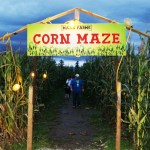Maan Farms Haunted Corn Maze