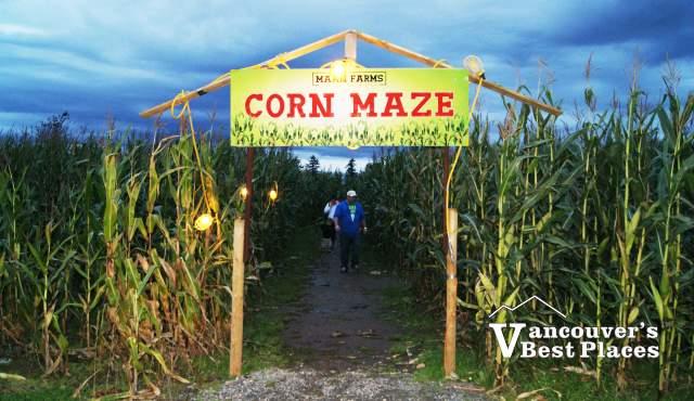 Maan Farms Haunted Corn Maze