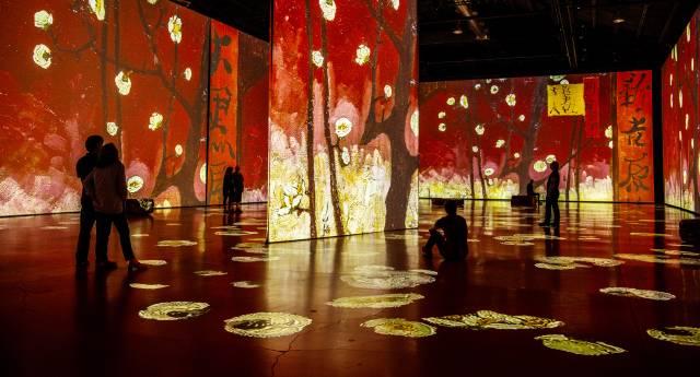 Van Gogh Exhibition Display