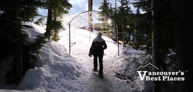 Light Walk Trail at Grouse
