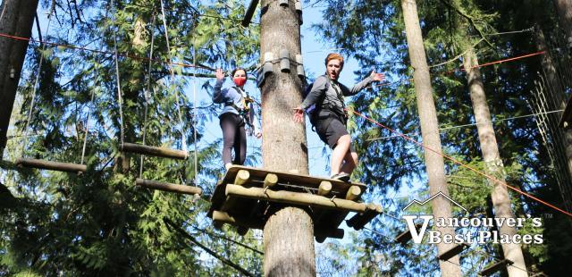 High in the Treetops in Maple Ridge
