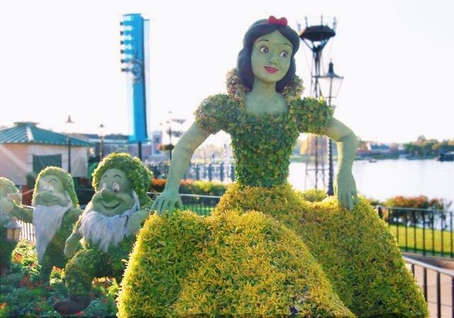 snow-white-topiary
