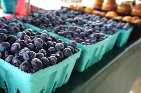 blueberries-farmers-market