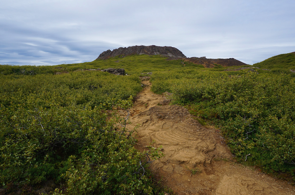 iceland_small_3487
