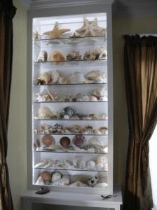 custom shell cabinet