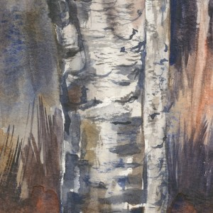 VMW00178 Ghostly Aspens by Vandy Massey. Watercolour painting. 27 x 27 cm. Detail 1