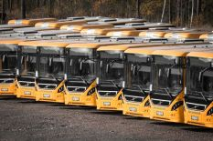 A gang of buses