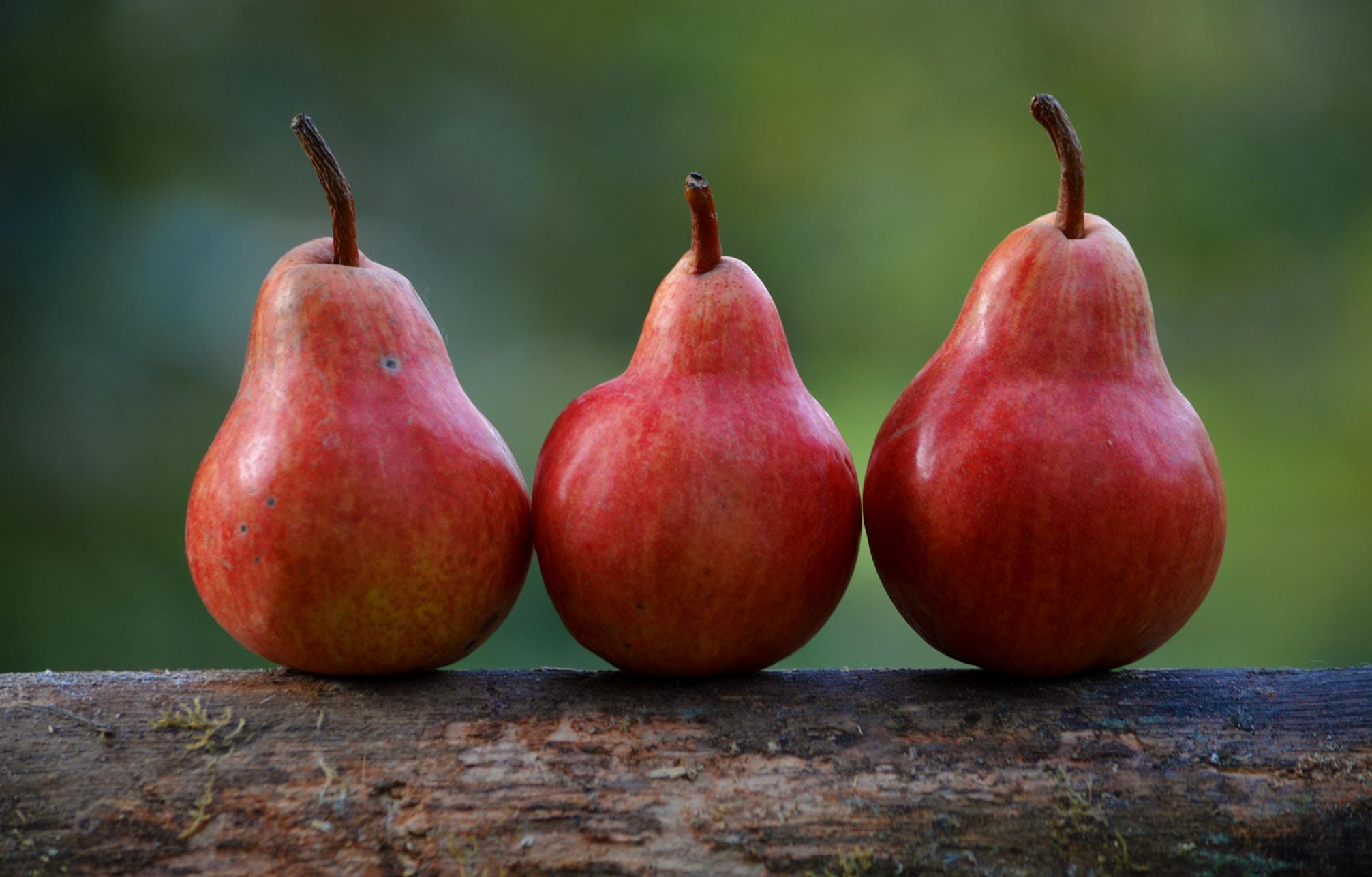 Gratin pommes, poires et noisettes