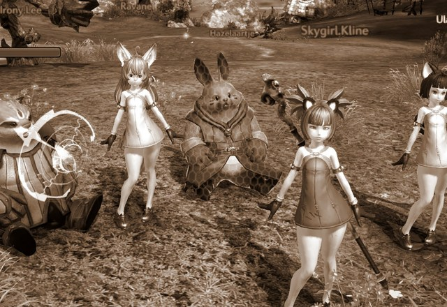 """Avatars from the """"galactic"""" VB Friends group, including World of Warcraft, Lord of the Rings Online, Second Life, et al, gathered for a field trip to the virtual world of Tera"""