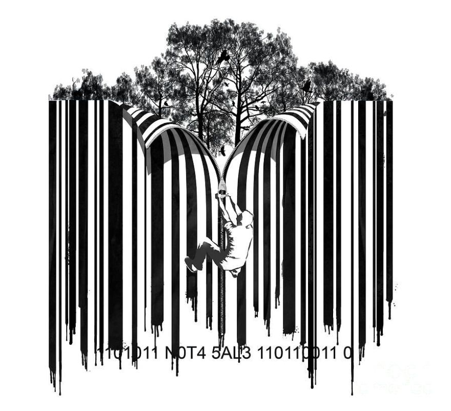 unzipped-forest-barcode