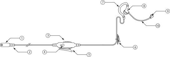 EH-LB-Diagram