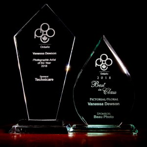 Photographer of the Year and Best in Class Trophies - PPOC Ontario 2018