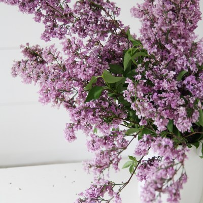 Styled Shot: Farmhouse vase and lilacs