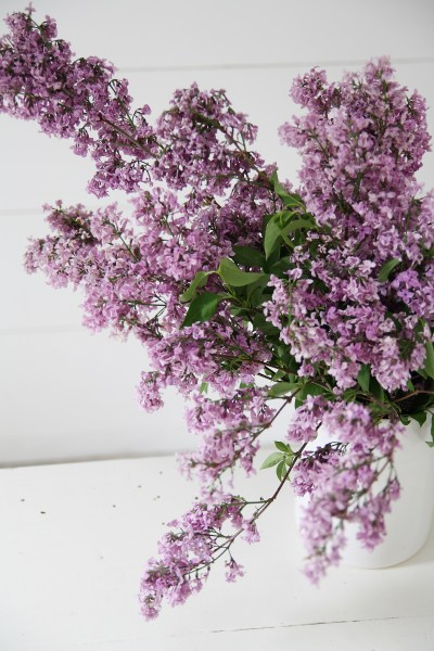 Styled Shot: Farmhouse vase and lilacs