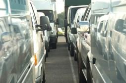 Vans ready for Manheim auction