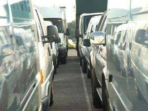 Vans ready for Manheim auction
