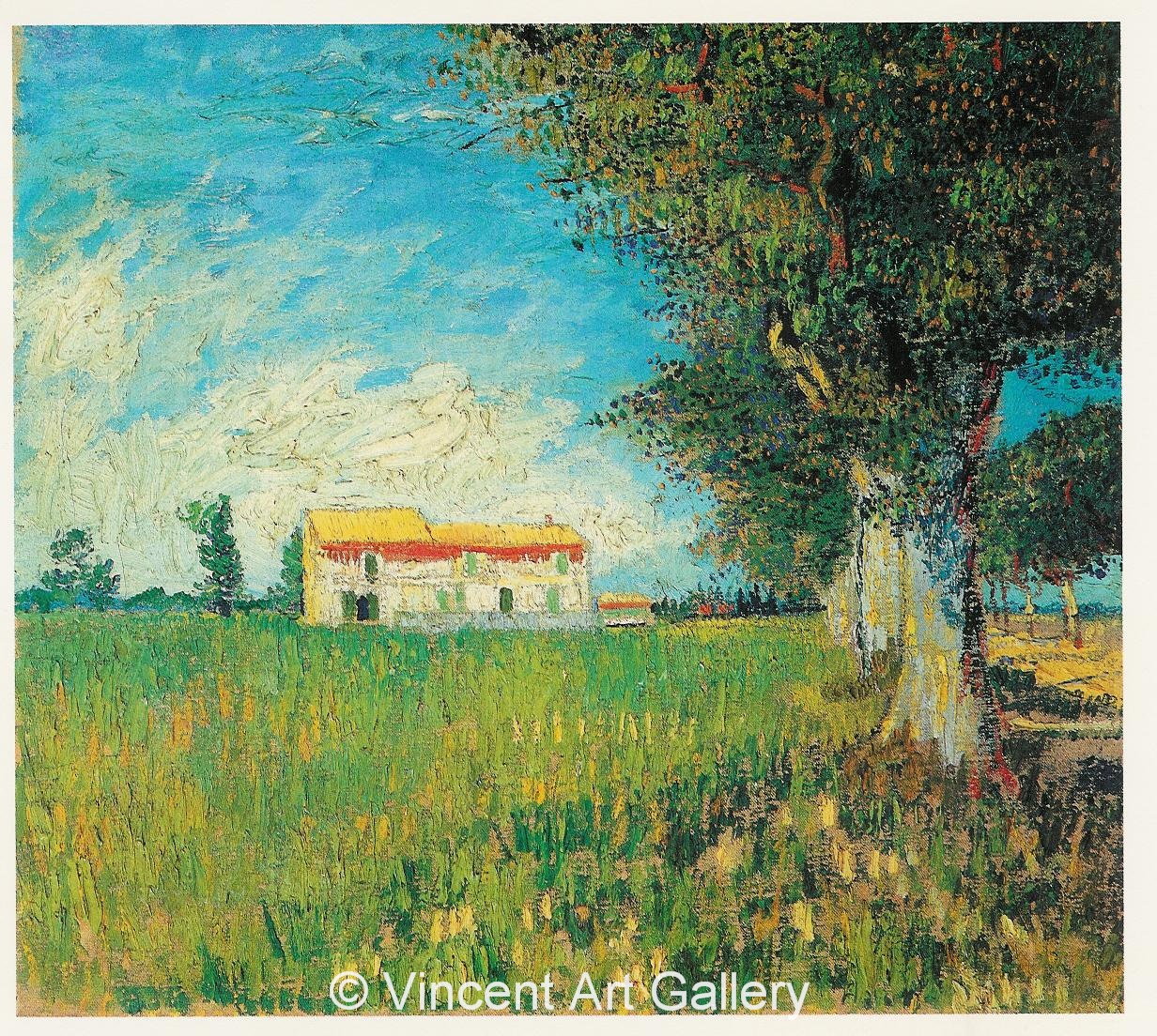 Farmhouse In A Wheat Field By Vincent Van Gogh Oil