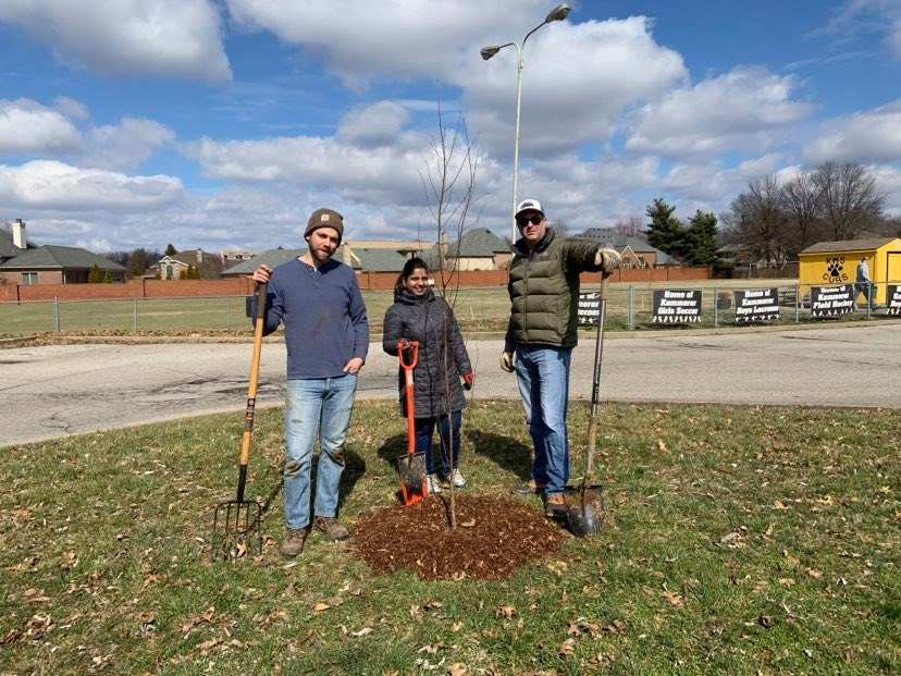 3 people standing around tree planted