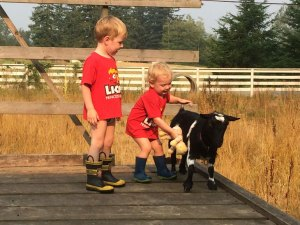 Our sons playing with our Nigerian Dwarf goat, Hailey
