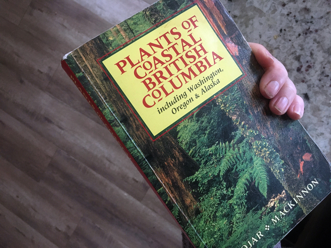 Taxonomical reference book for flower foraging