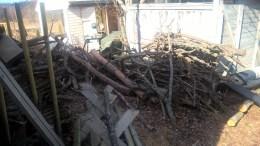 woodland-garden-sticks_33769035970_o