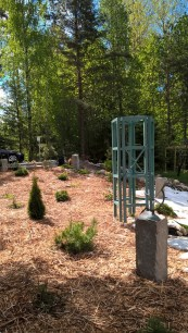 expanded woodland garden 29 May 2017