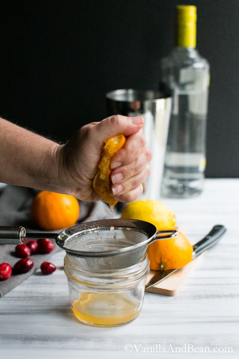A festive ginger beer, citrus, and cranberry cocktail. | Vanilla And Bean