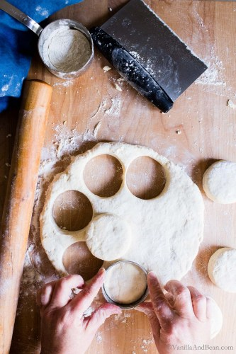 Sourdough Starter Biscuits