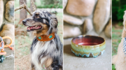 Wild Hound Outfitters: Quality Handcrafted Accessories for the Outdoor Hound