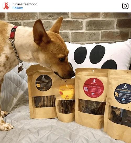 Furries Fresh Food Treats   Vanillapup