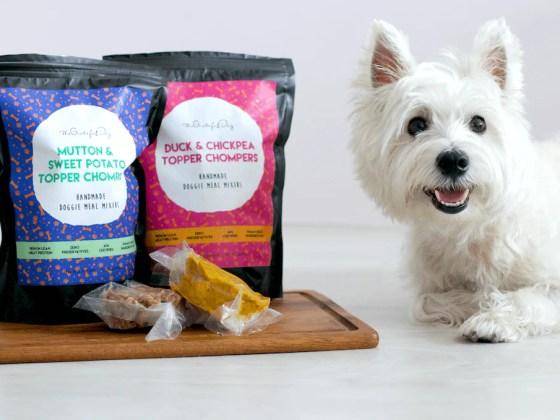 The Grateful Dog Topper Chompers | Vanillapup